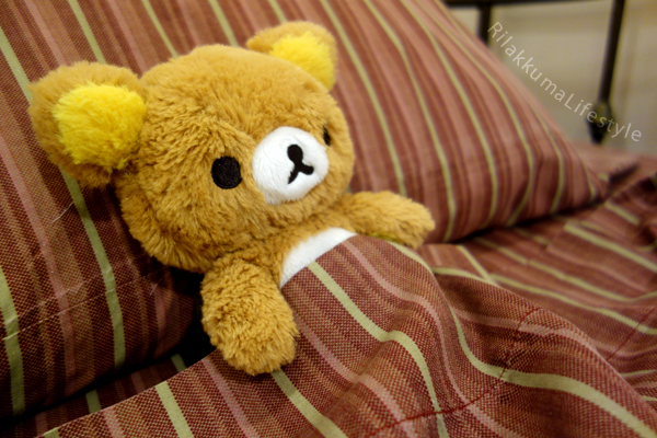 My Only Rilakkuma - in bed
