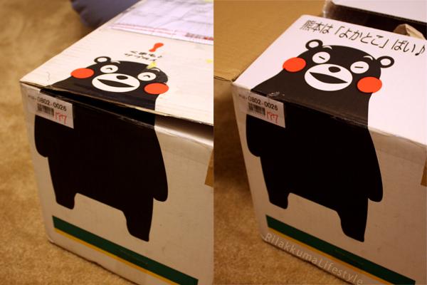 Tokyo Station Opening - box