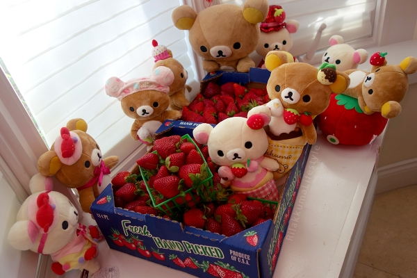 Rilakkuma Lifestyle - Strawberry Festival