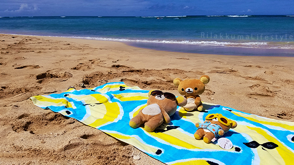 Rilakkuma Lifestyle in Hawaii - Waikiki Beach