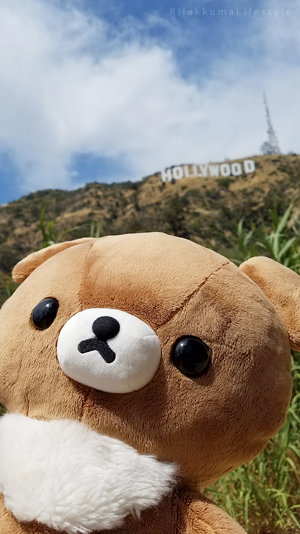 Rilakkuma Lifestyle in Los Angeles LA and Las Vegas - Hollywood - Koguma-chan