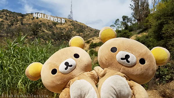 Rilakkuma Lifestyle in Los Angeles LA and Las Vegas - Hollywood - BD Bear + Kuma-san