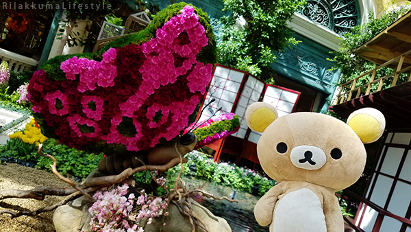 Rilakkuma Lifestyle in Los Angeles LA and Las Vegas - Bellagio - Conservatory and Botanical Gardens - Japanese Spring - butterfly